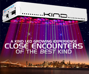 KIND LED Grow Lights are the BEST LED lights in the indoor gardening industry.  With 3W diodes, Secondary Optical Lens, 700MA power drive and the first Perfect 12-band spectrum
